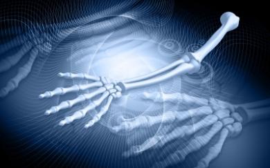 3d rendering of skeleton arms