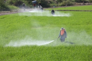 farmers spraying pesticides on fields