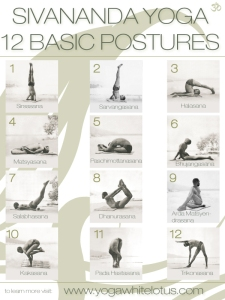 12-basic-postures2 siv